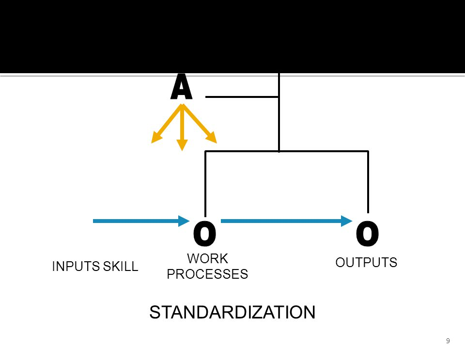 WORK PROCESSES OUTPUTS STANDARDIZATION INPUTS SKILL M A O