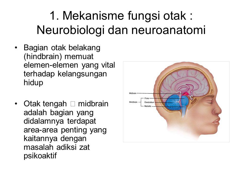 1. Mekanisme fungsi otak : Neurobiologi dan neuroanatomi