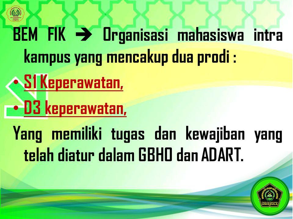BEM FIK  Organisasi mahasiswa intra kampus yang mencakup dua prodi :