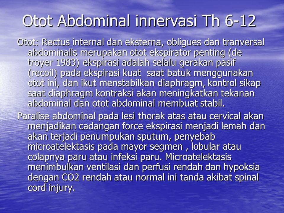 Otot Abdominal innervasi Th 6-12