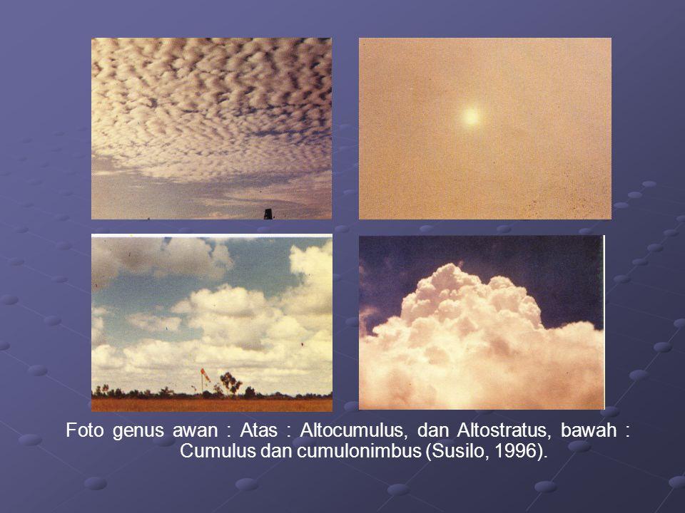 Foto genus awan : Atas : Altocumulus, dan Altostratus, bawah : Cumulus dan cumulonimbus (Susilo, 1996).