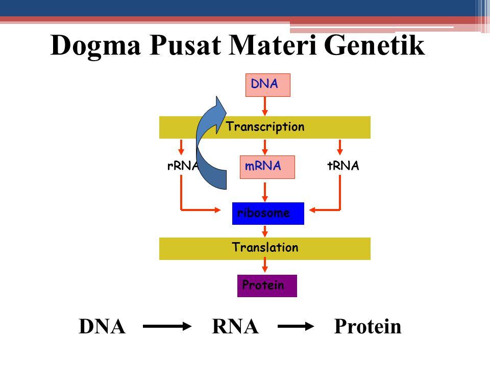 Dogma Pusat Materi Genetik