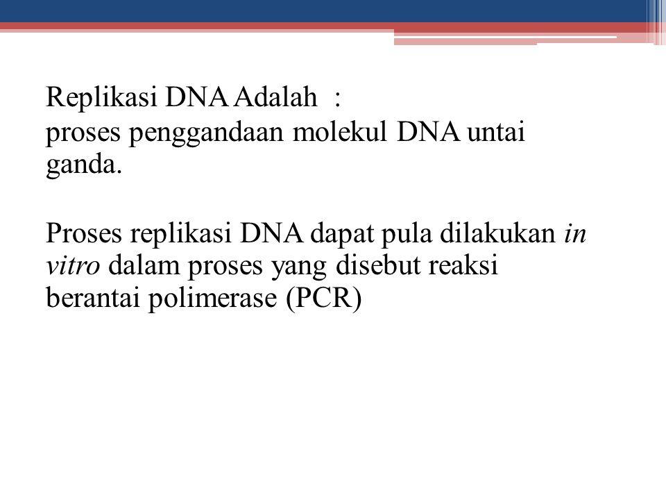 Replikasi DNA Adalah : proses penggandaan molekul DNA untai ganda