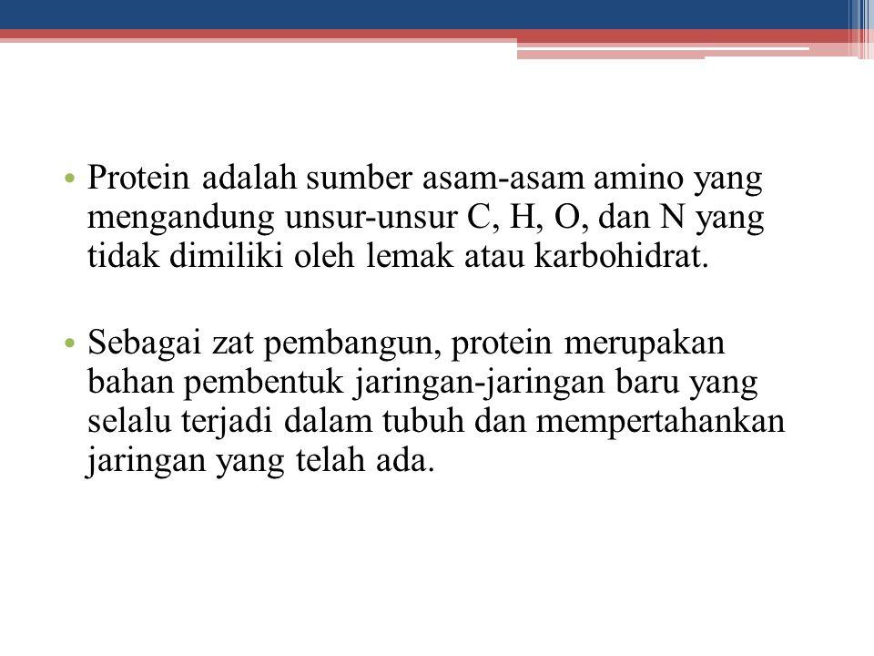 Protein adalah sumber asam-asam amino yang mengandung unsur-unsur C, H, O, dan N yang tidak dimiliki oleh lemak atau karbohidrat.