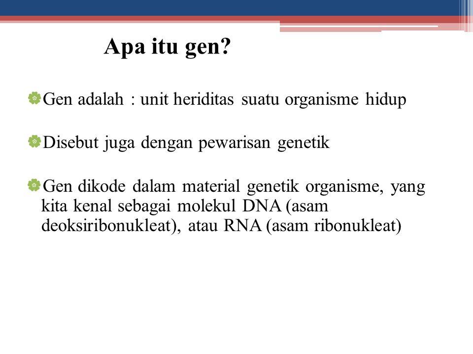 Apa itu gen Gen adalah : unit heriditas suatu organisme hidup