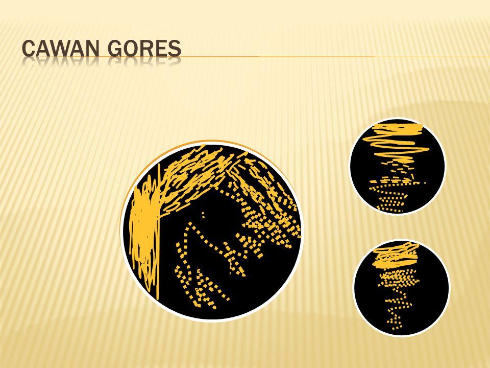 Cawan Gores
