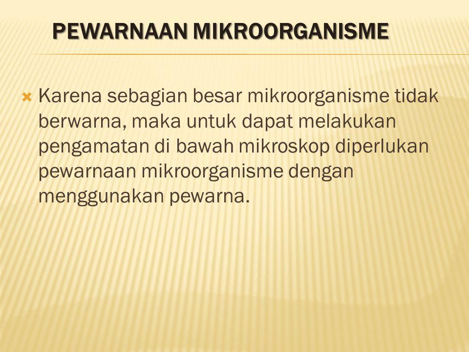 PEWARNAAN MIKROORGANISME