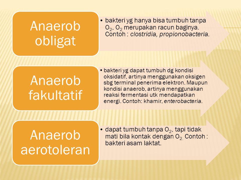 Anaerob obligat bakteri yg hanya bisa tumbuh tanpa O2, O2 merupakan racun baginya. Contoh : clostridia, propionobacteria.