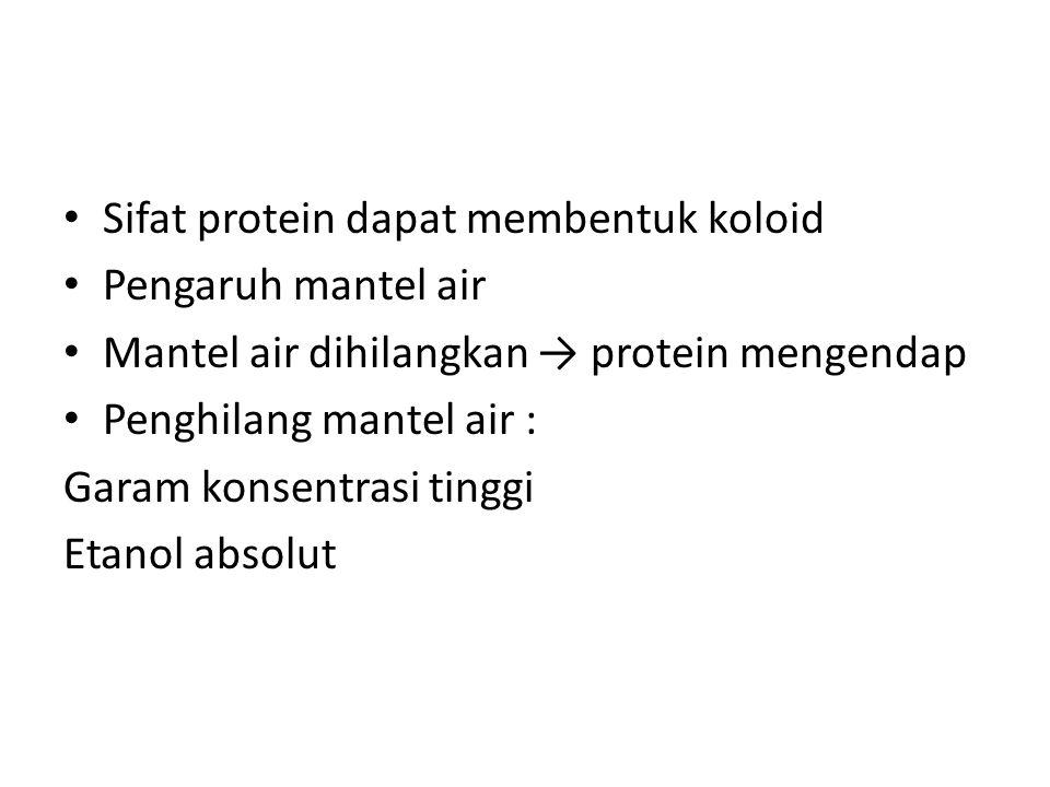 Sifat protein dapat membentuk koloid