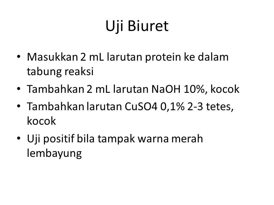Uji Biuret Masukkan 2 mL larutan protein ke dalam tabung reaksi