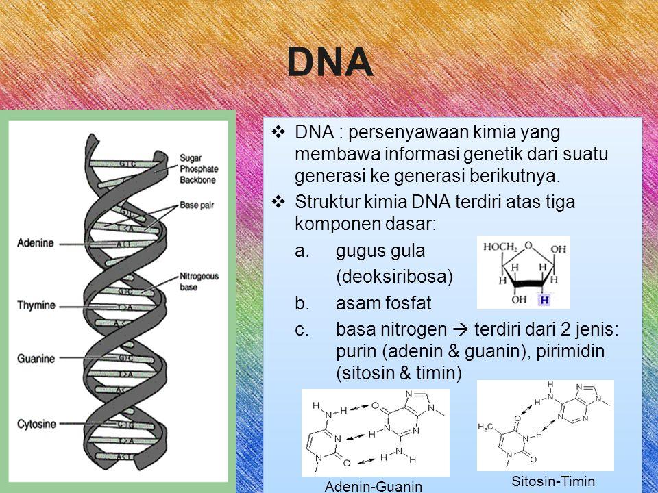 DNA DNA : persenyawaan kimia yang membawa informasi genetik dari suatu generasi ke generasi berikutnya.