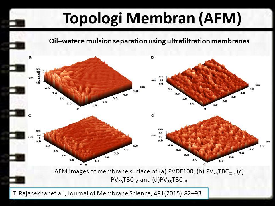 Topologi Membran (AFM)