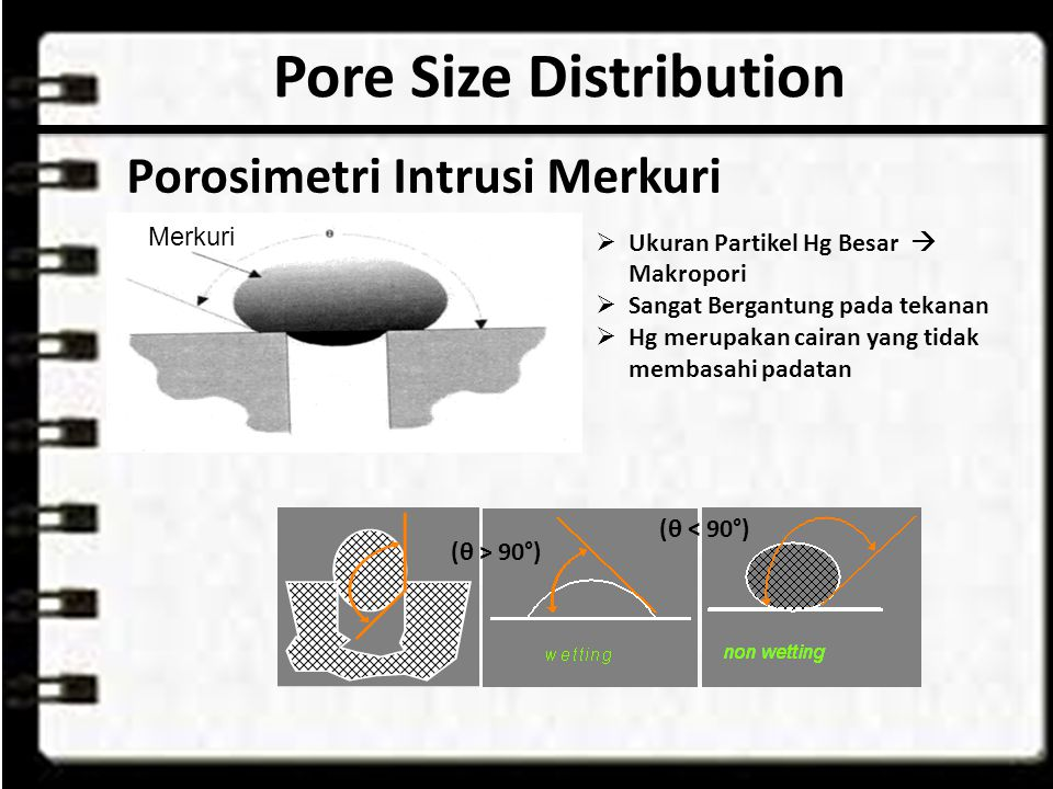 Pore Size Distribution