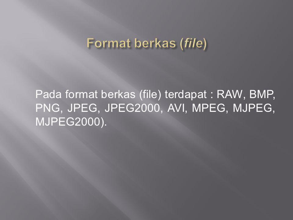 Format berkas (file) Pada format berkas (file) terdapat : RAW, BMP, PNG, JPEG, JPEG2000, AVI, MPEG, MJPEG, MJPEG2000).