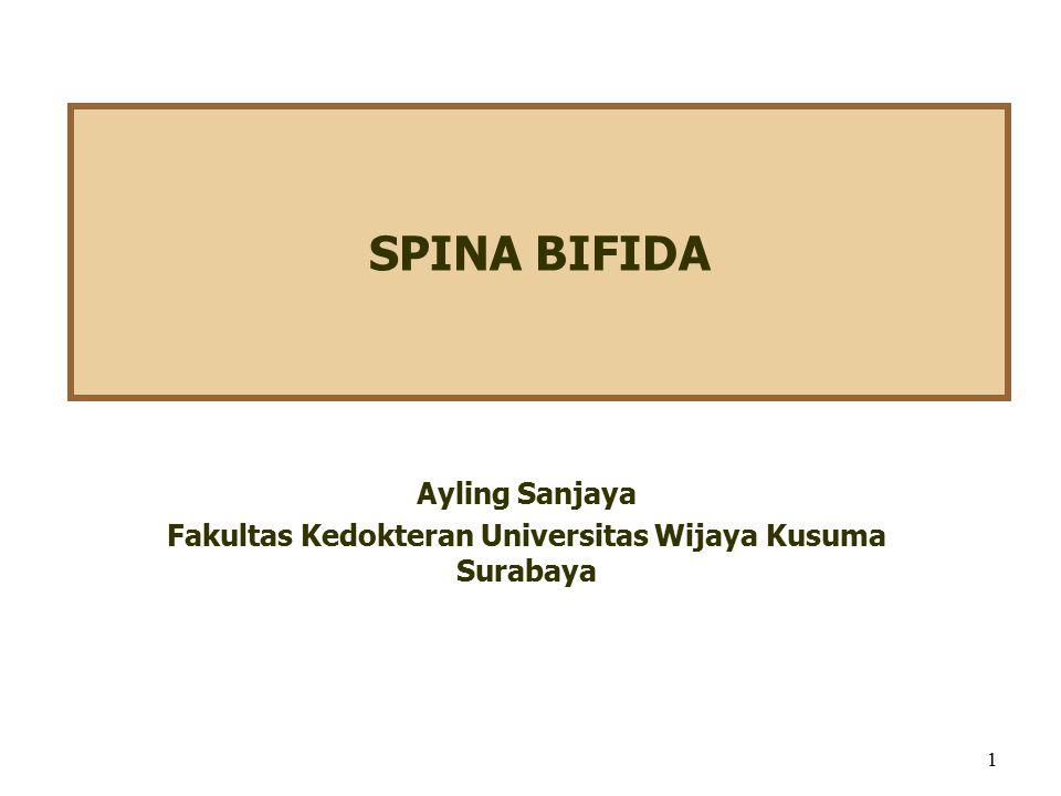 Ayling Sanjaya Fakultas Kedokteran Universitas Wijaya Kusuma Surabaya