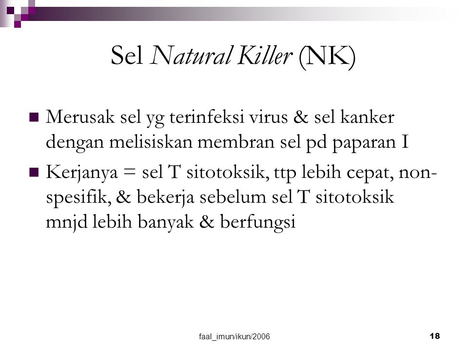 Sel Natural Killer (NK)
