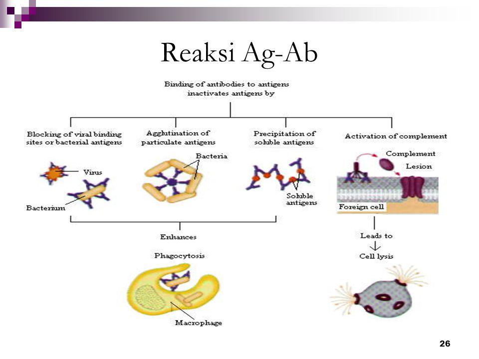 Reaksi Ag-Ab