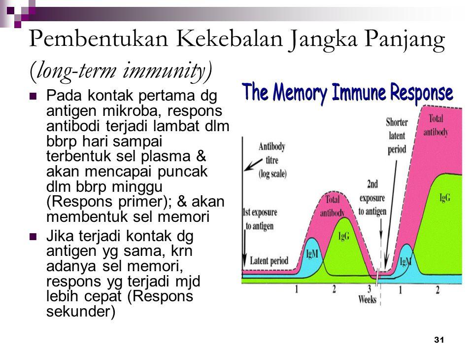 Pembentukan Kekebalan Jangka Panjang (long-term immunity)