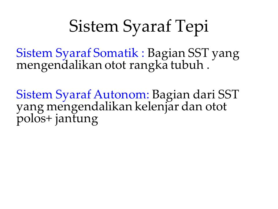 Sistem Syaraf Tepi Sistem Syaraf Somatik : Bagian SST yang mengendalikan otot rangka tubuh .