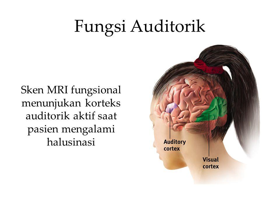 Fungsi Auditorik Sken MRI fungsional menunjukan korteks auditorik aktif saat pasien mengalami halusinasi.