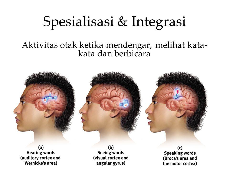 Spesialisasi & Integrasi