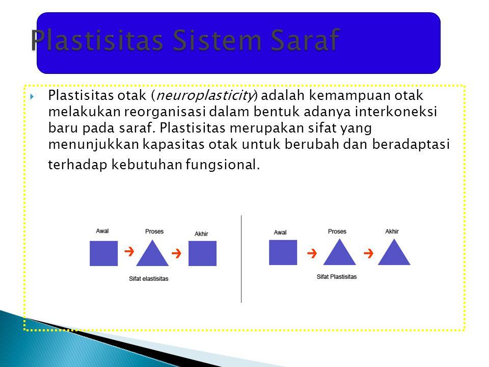 Plastisitas Sistem Saraf