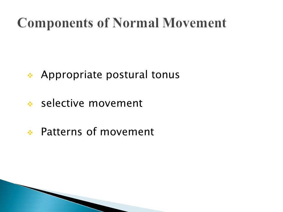 Components of Normal Movement