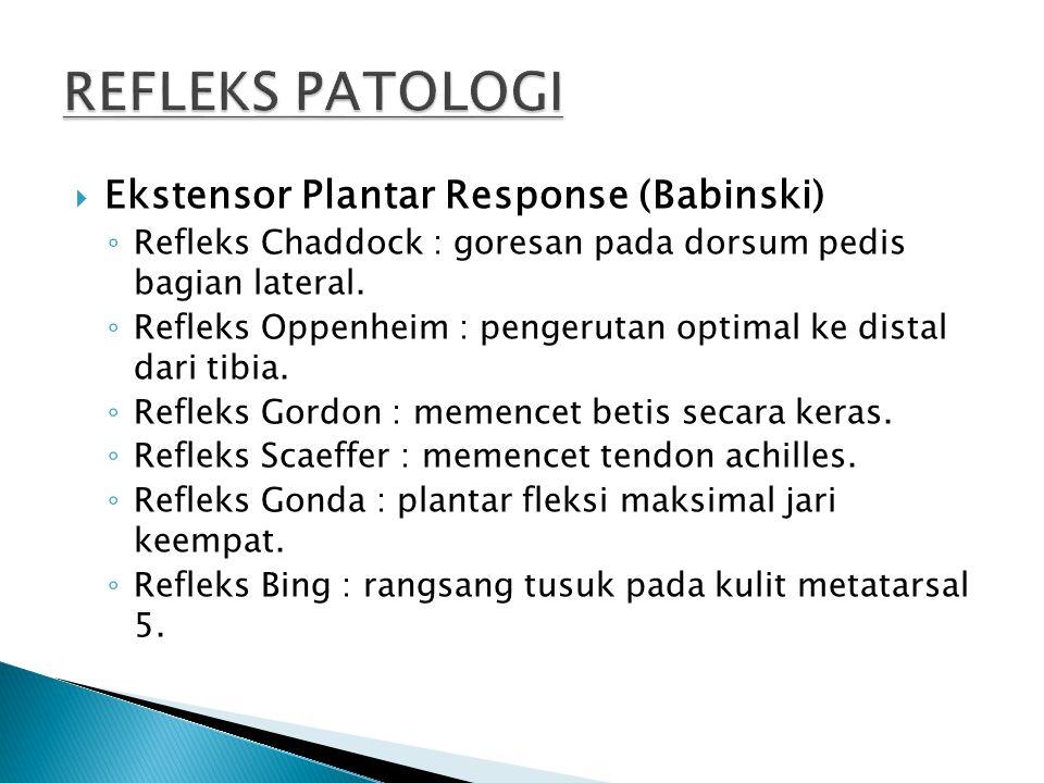 REFLEKS PATOLOGI Ekstensor Plantar Response (Babinski)