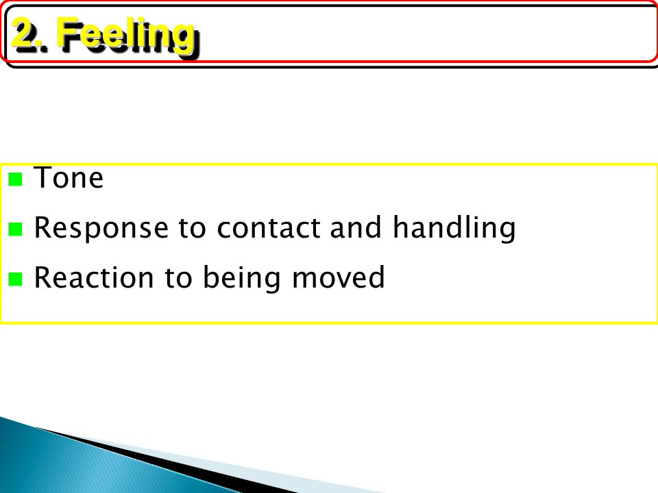 2. Feeling Tone Response to contact and handling