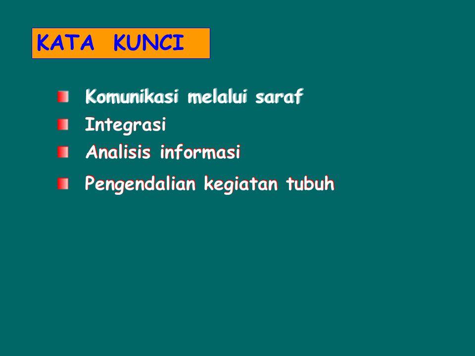 KATA KUNCI Komunikasi melalui saraf Integrasi Analisis informasi