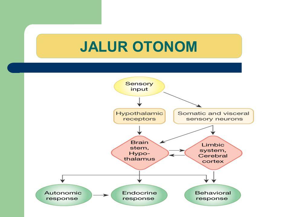 JALUR OTONOM