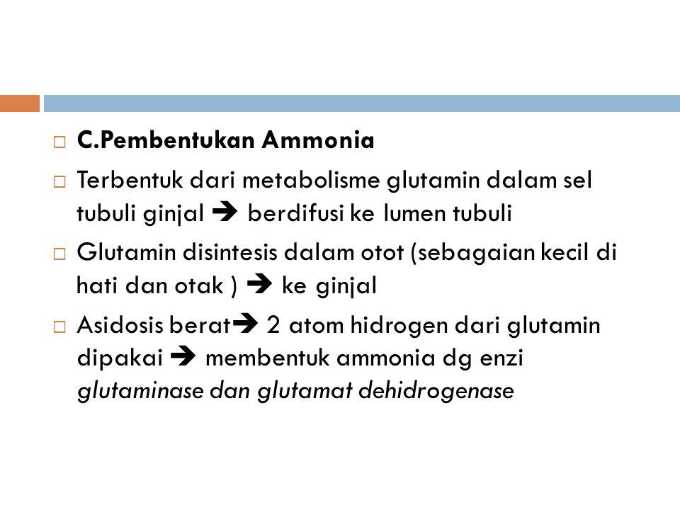 C.Pembentukan Ammonia Terbentuk dari metabolisme glutamin dalam sel tubuli ginjal  berdifusi ke lumen tubuli.