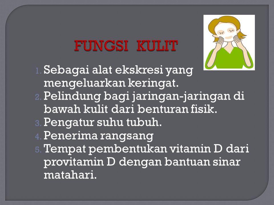 FUNGSI KULIT Sebagai alat ekskresi yang mengeluarkan keringat.