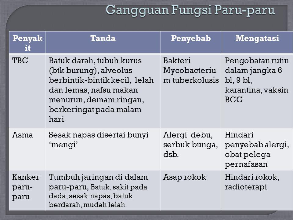 Gangguan Fungsi Paru-paru