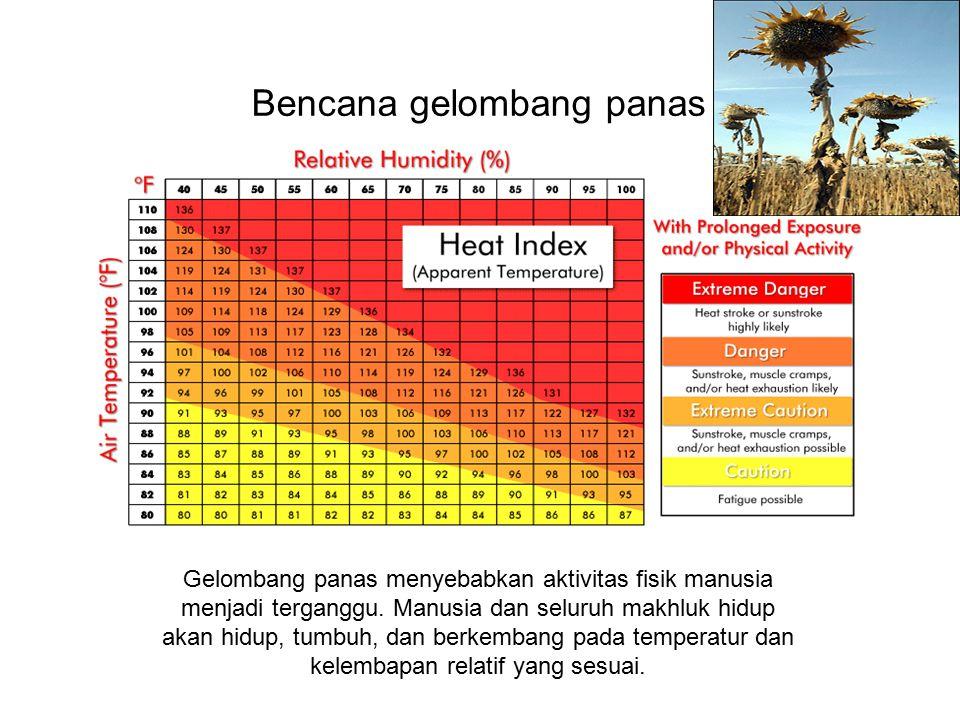 Bencana gelombang panas