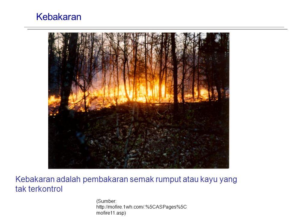 Kebakaran Kebakaran adalah pembakaran semak rumput atau kayu yang
