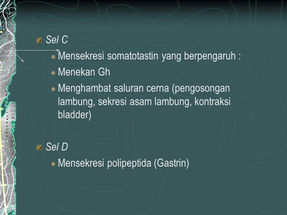 Sel C Mensekresi somatotastin yang berpengaruh : Menekan Gh.