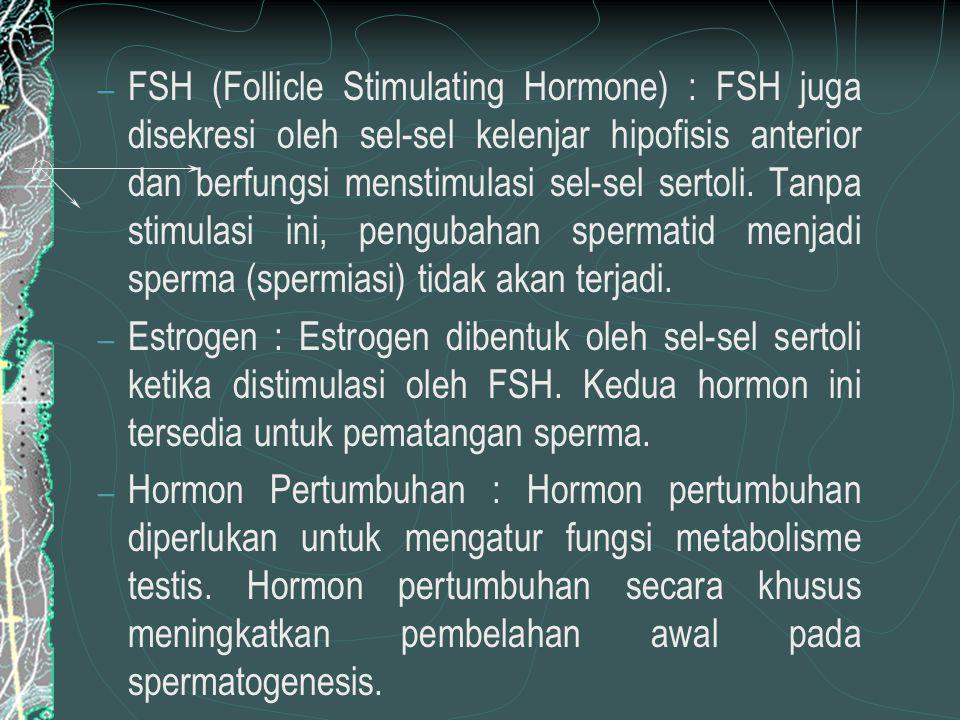 FSH (Follicle Stimulating Hormone) : FSH juga disekresi oleh sel-sel kelenjar hipofisis anterior dan berfungsi menstimulasi sel-sel sertoli. Tanpa stimulasi ini, pengubahan spermatid menjadi sperma (spermiasi) tidak akan terjadi.