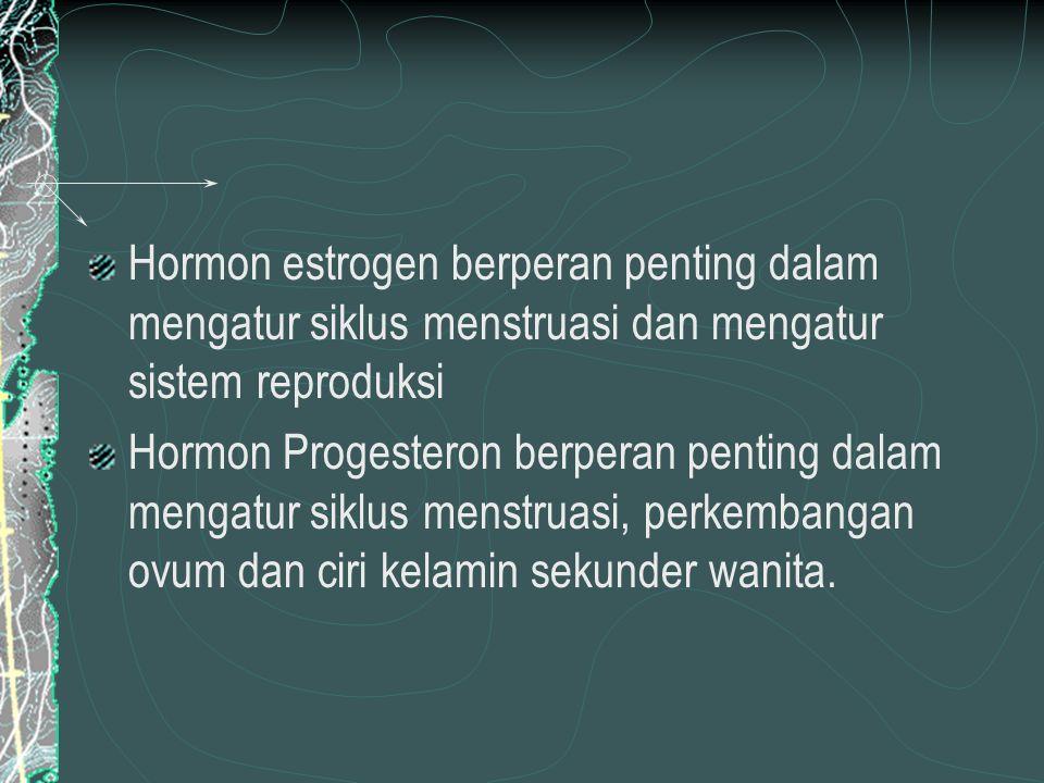 Hormon estrogen berperan penting dalam mengatur siklus menstruasi dan mengatur sistem reproduksi