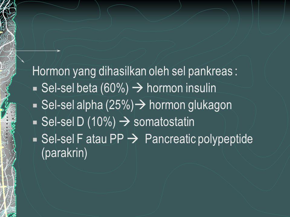 Hormon yang dihasilkan oleh sel pankreas :