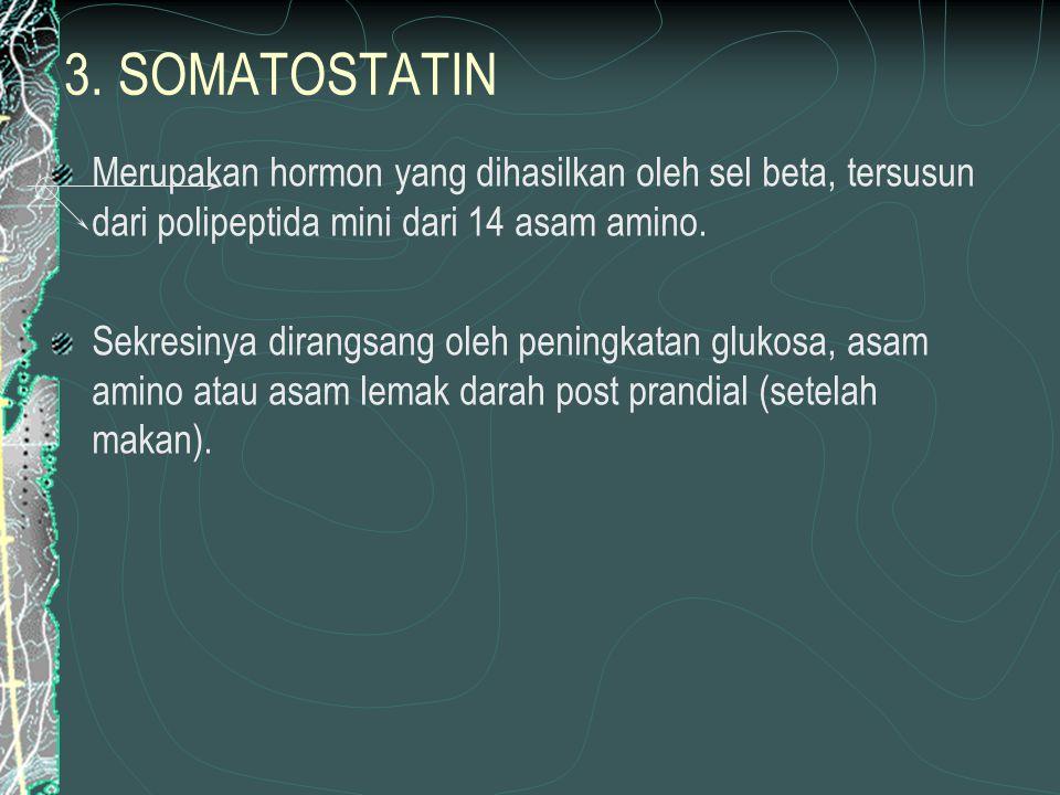 3. SOMATOSTATIN Merupakan hormon yang dihasilkan oleh sel beta, tersusun dari polipeptida mini dari 14 asam amino.