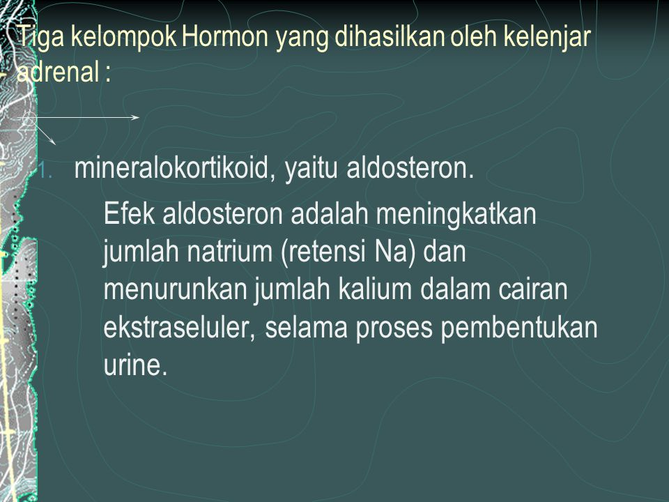 Tiga kelompok Hormon yang dihasilkan oleh kelenjar adrenal :