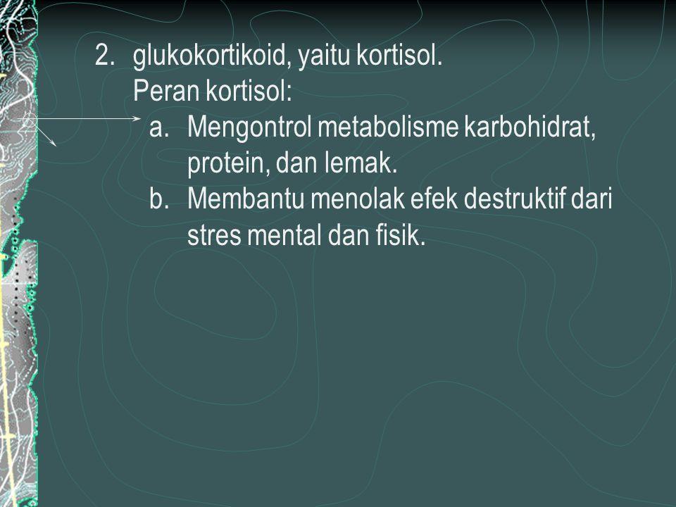 glukokortikoid, yaitu kortisol.