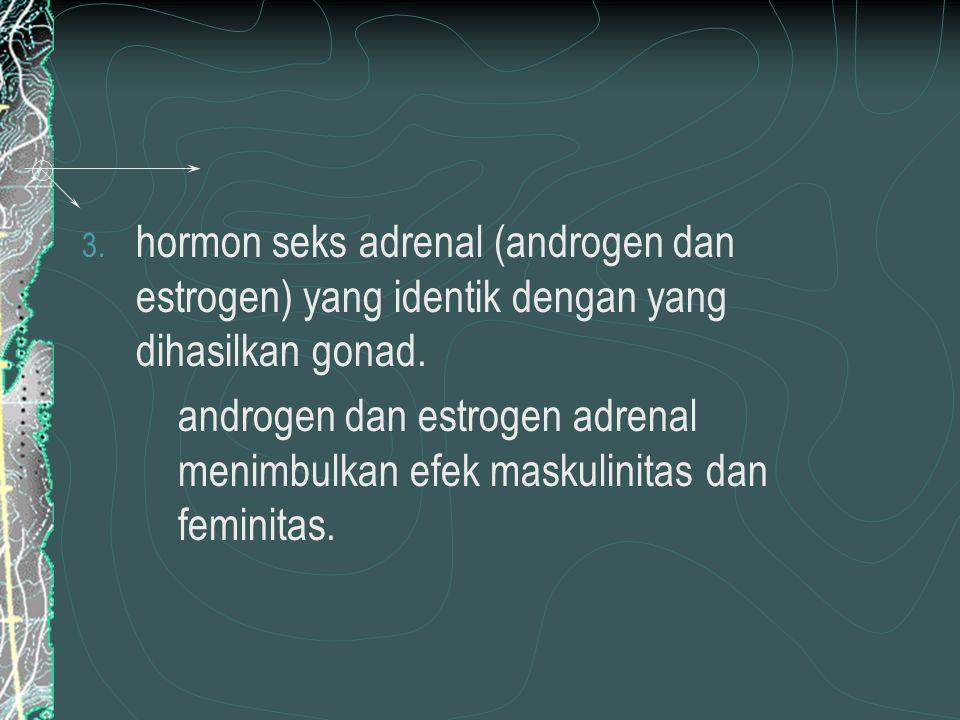 hormon seks adrenal (androgen dan estrogen) yang identik dengan yang dihasilkan gonad.