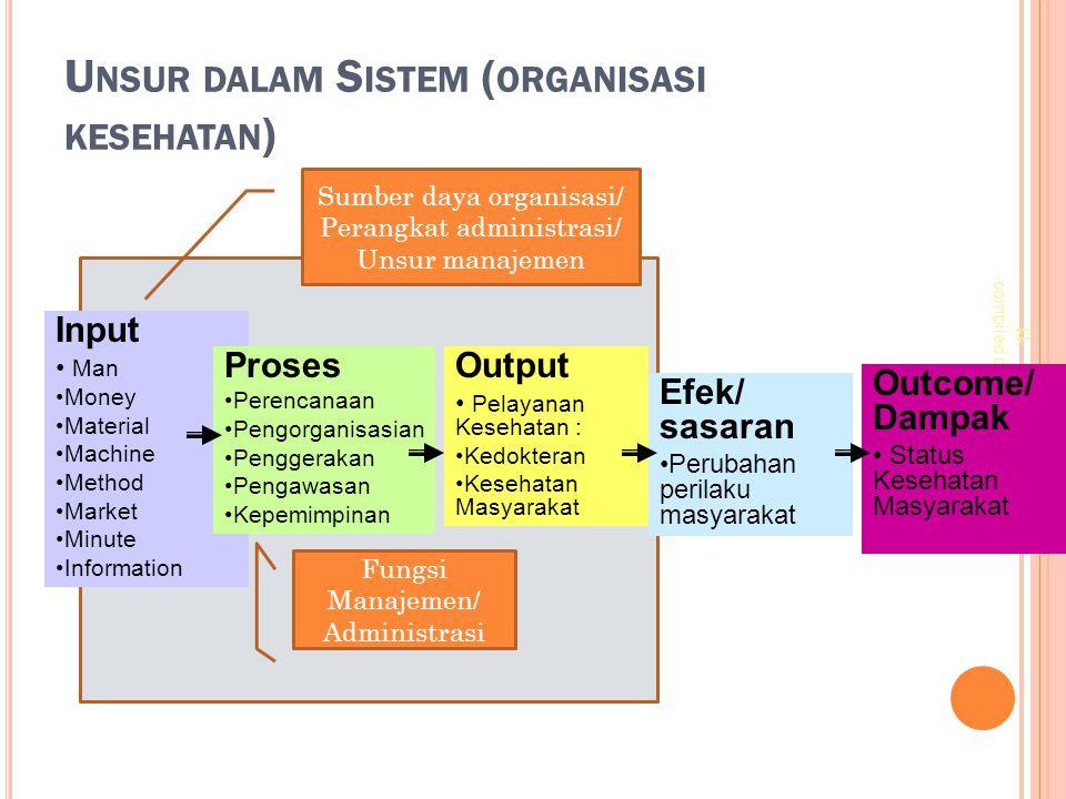 Unsur dalam Sistem (organisasi kesehatan)