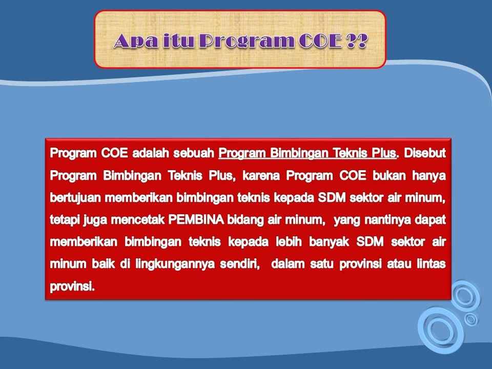 Apa itu Program COE