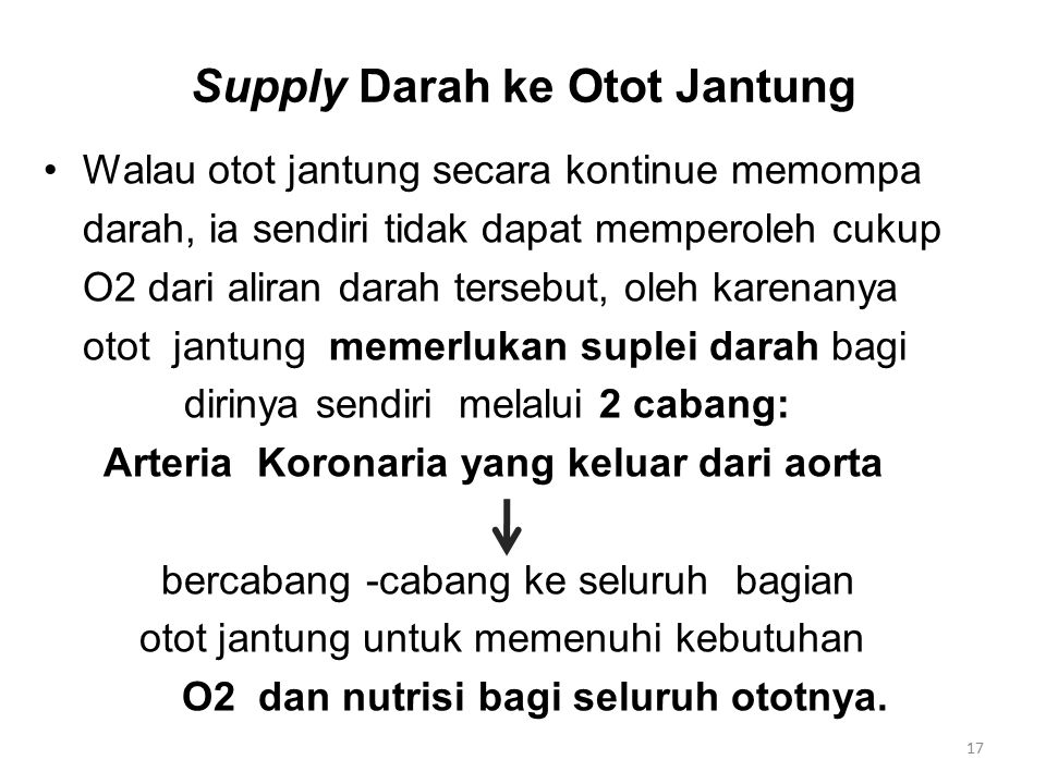 Supply Darah ke Otot Jantung