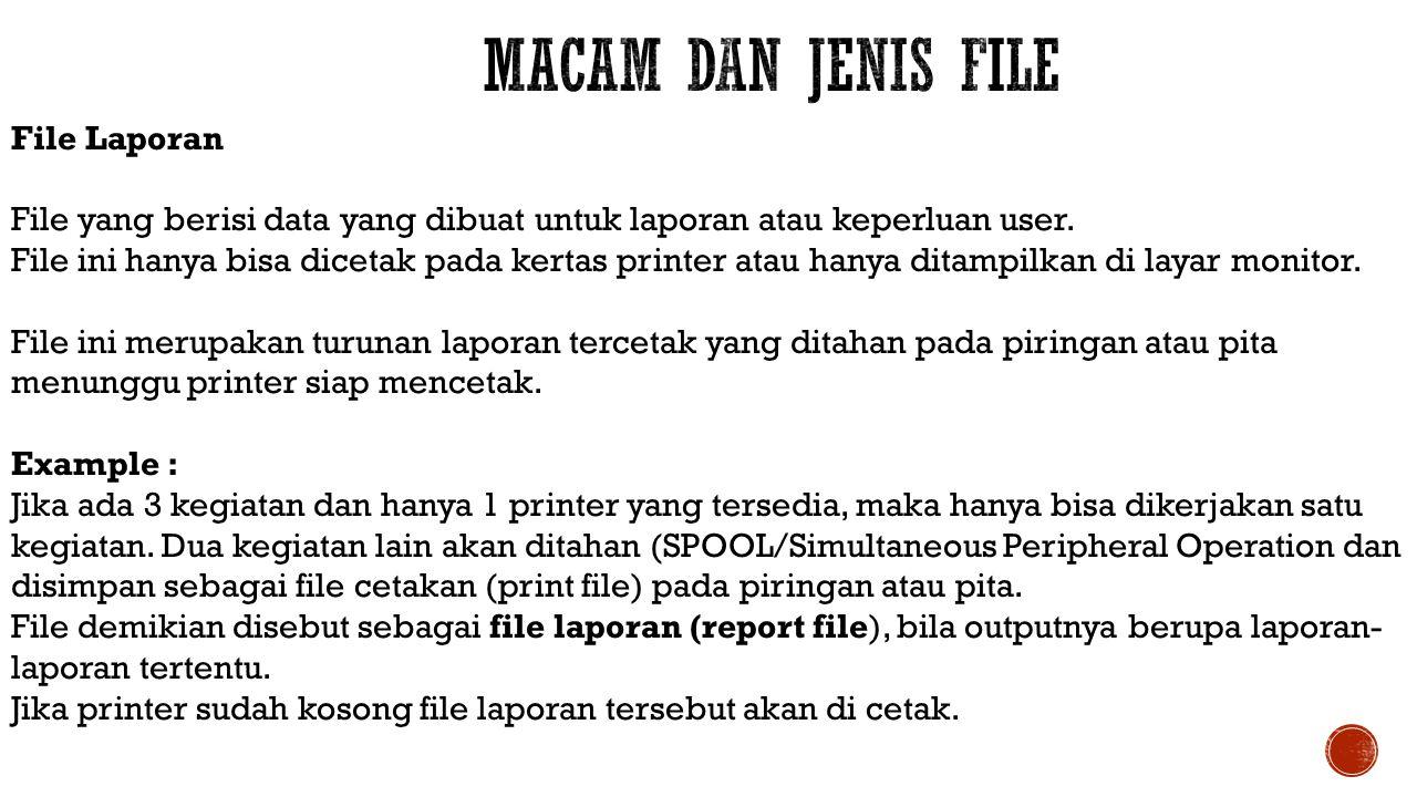 Macam dan Jenis File File Laporan