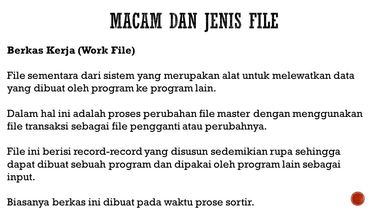 Macam dan Jenis File Berkas Kerja (Work File)