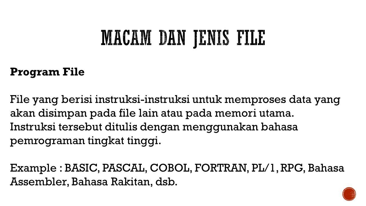 Macam dan Jenis File Program File